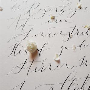 Zitat in moderner Kalligraphie mit schwarzer Tinte auf cremefarbenem Papier