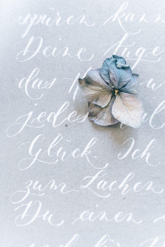 Schrift weiß auf grau
